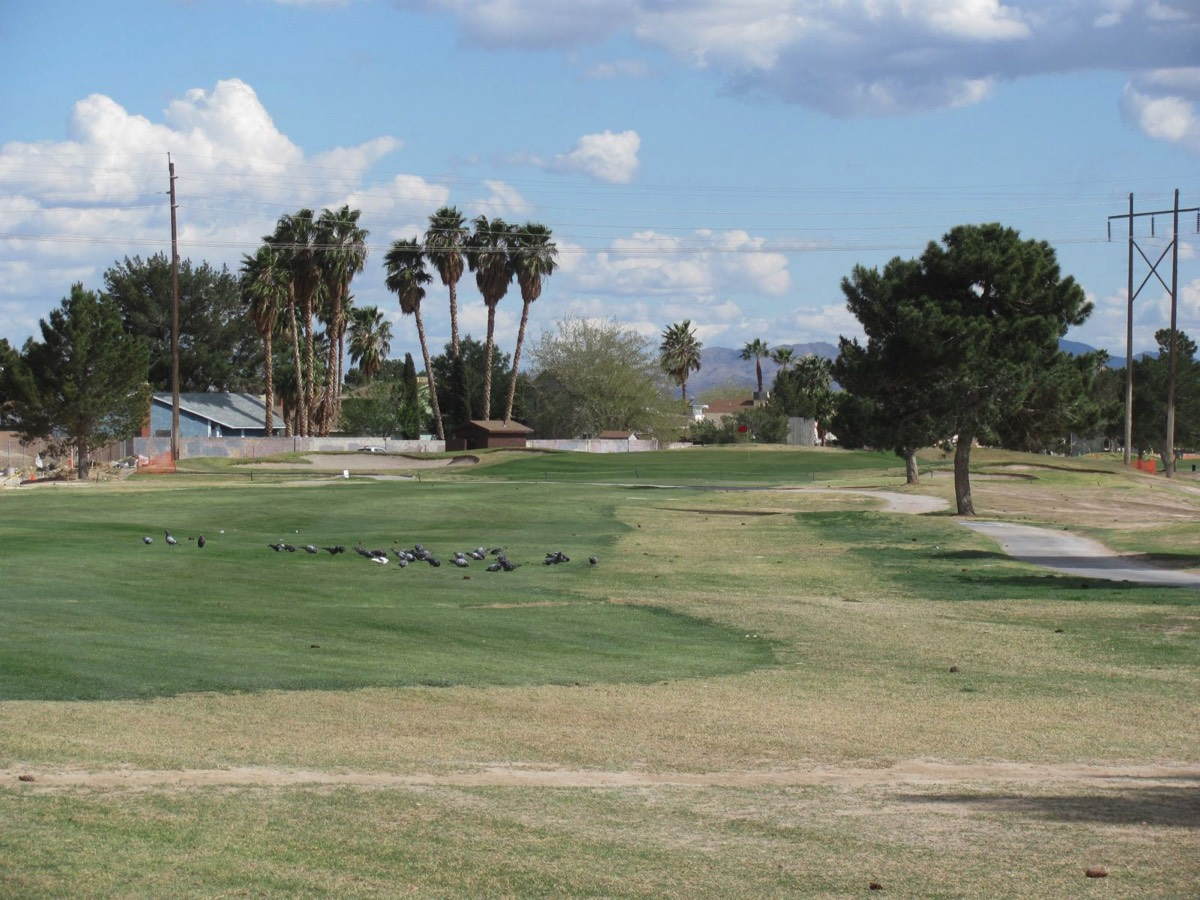 A 2009 look at the hole Mike Austin hit his famous 515-yard drive on